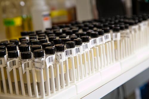 Data-sharing-Addgene-plasmid-samples