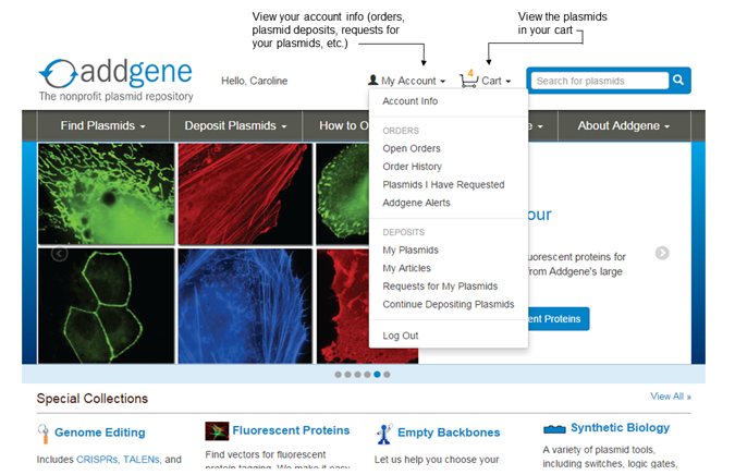 Addgene-New-Website-Account-Info