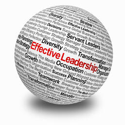leadershipball