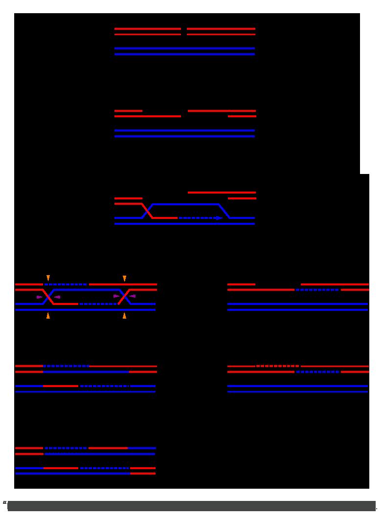 HR_schematic_diagram
