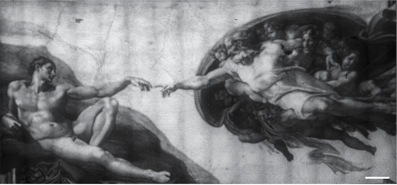 "bacteriograph of Michelangelo's ""The Creation of Adam."""