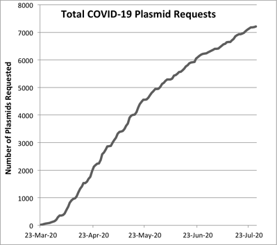 A graph of total COVID-19 plasmid requests at Addgene. Dates are on the x-axis and cumulative number of plasmid requests are on the y axis. The line depicting requests starts at zero and exceeds 7,000 after July 23,2020