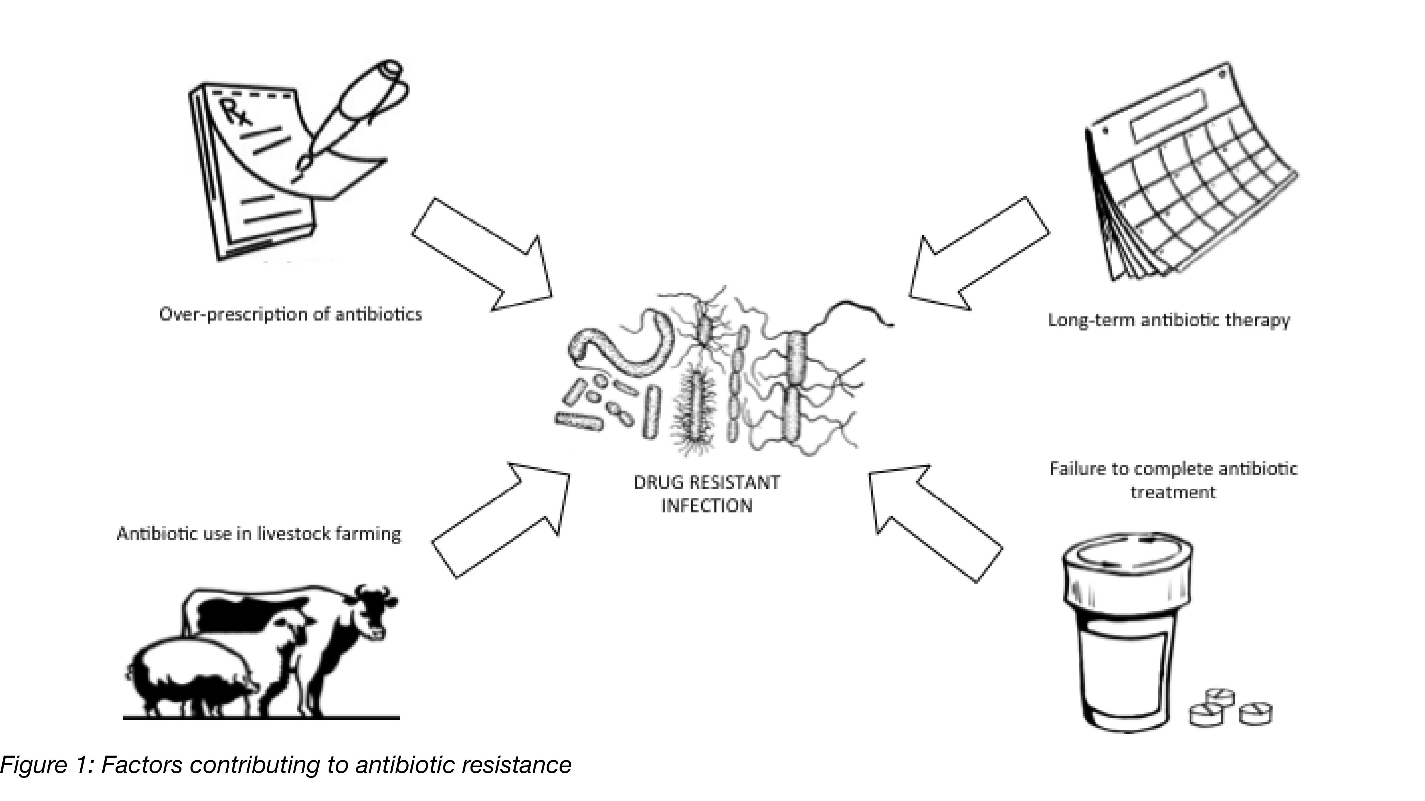 Factors Contributing to Antibiotic Resistance