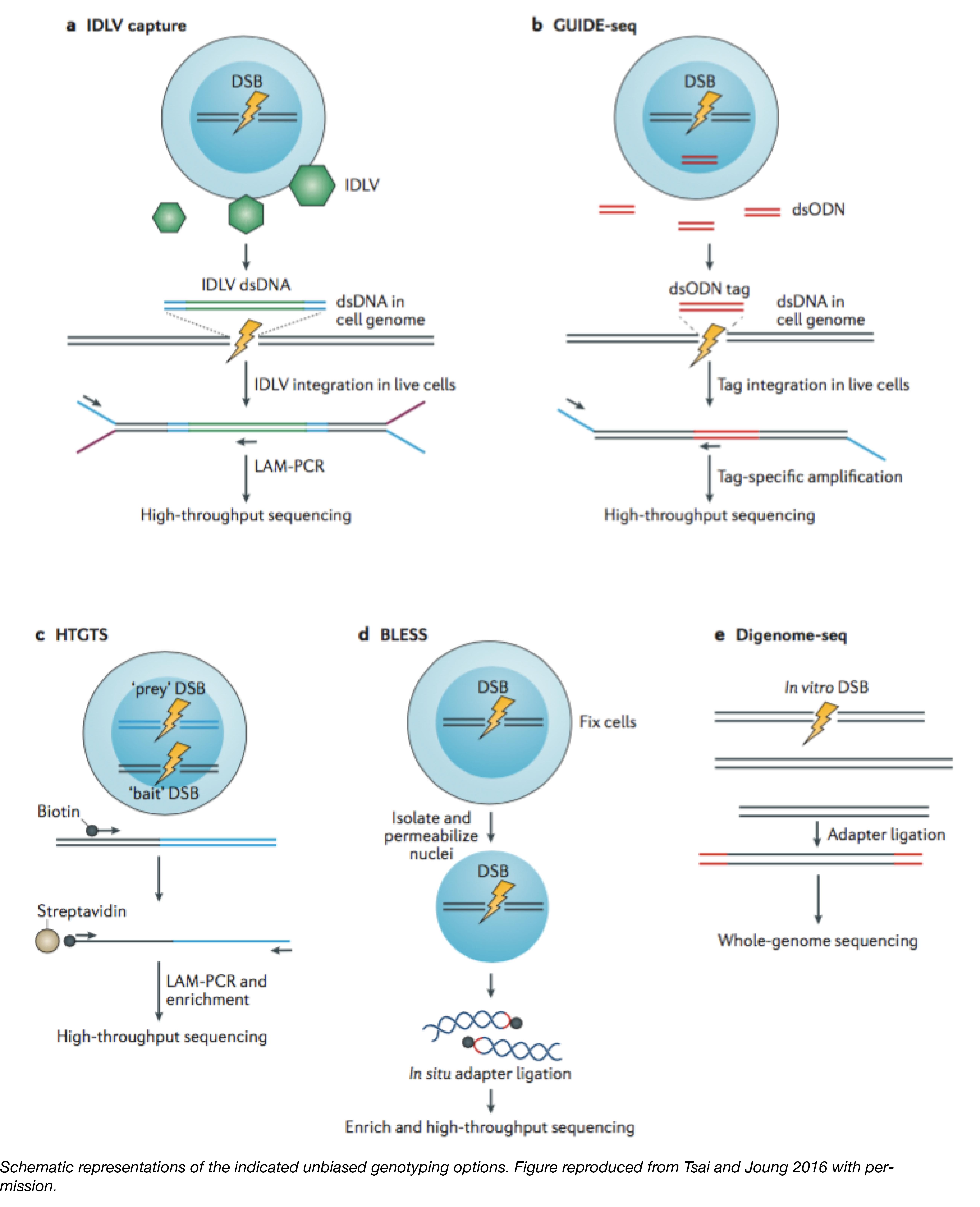 Unbiased Sequencing Methods