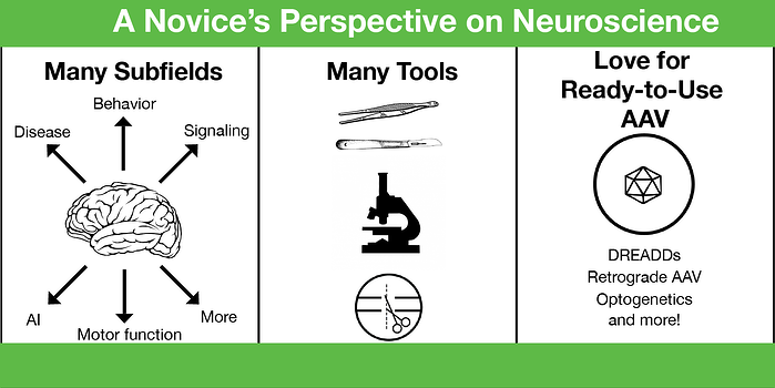 Many tools and subfields in neuroscience