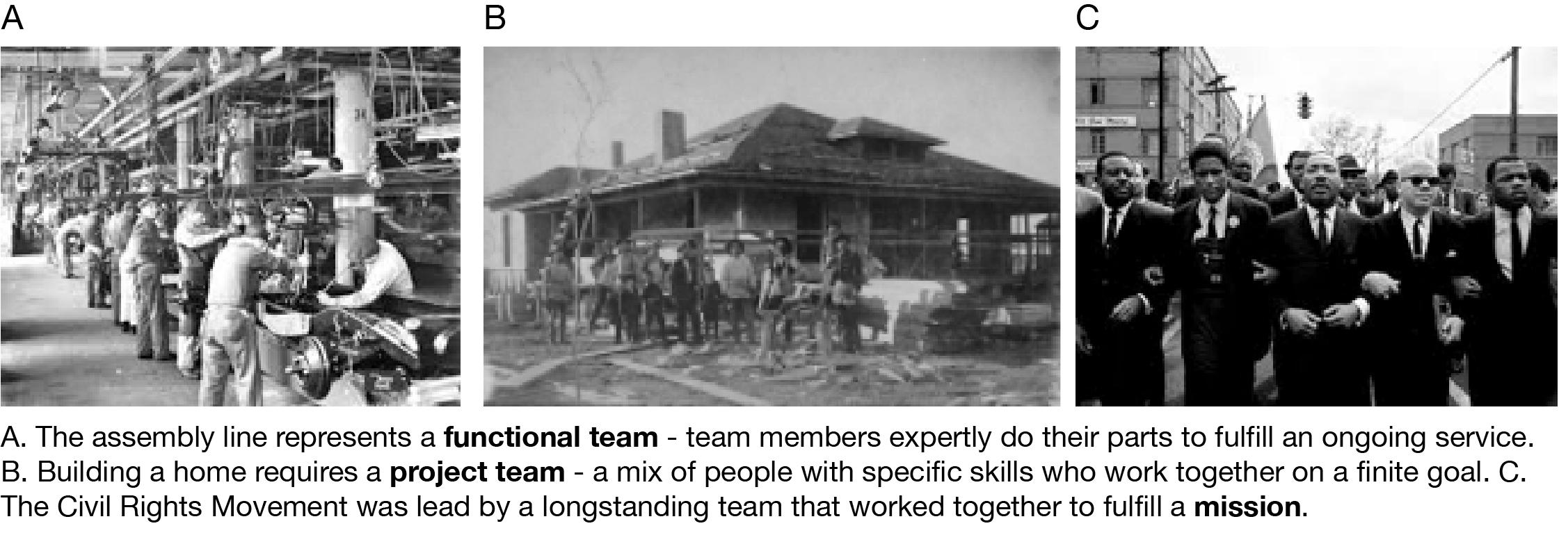 Types of Teams 2-01.png