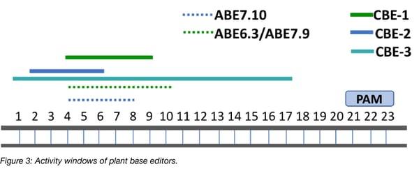 Activity window plant base editors