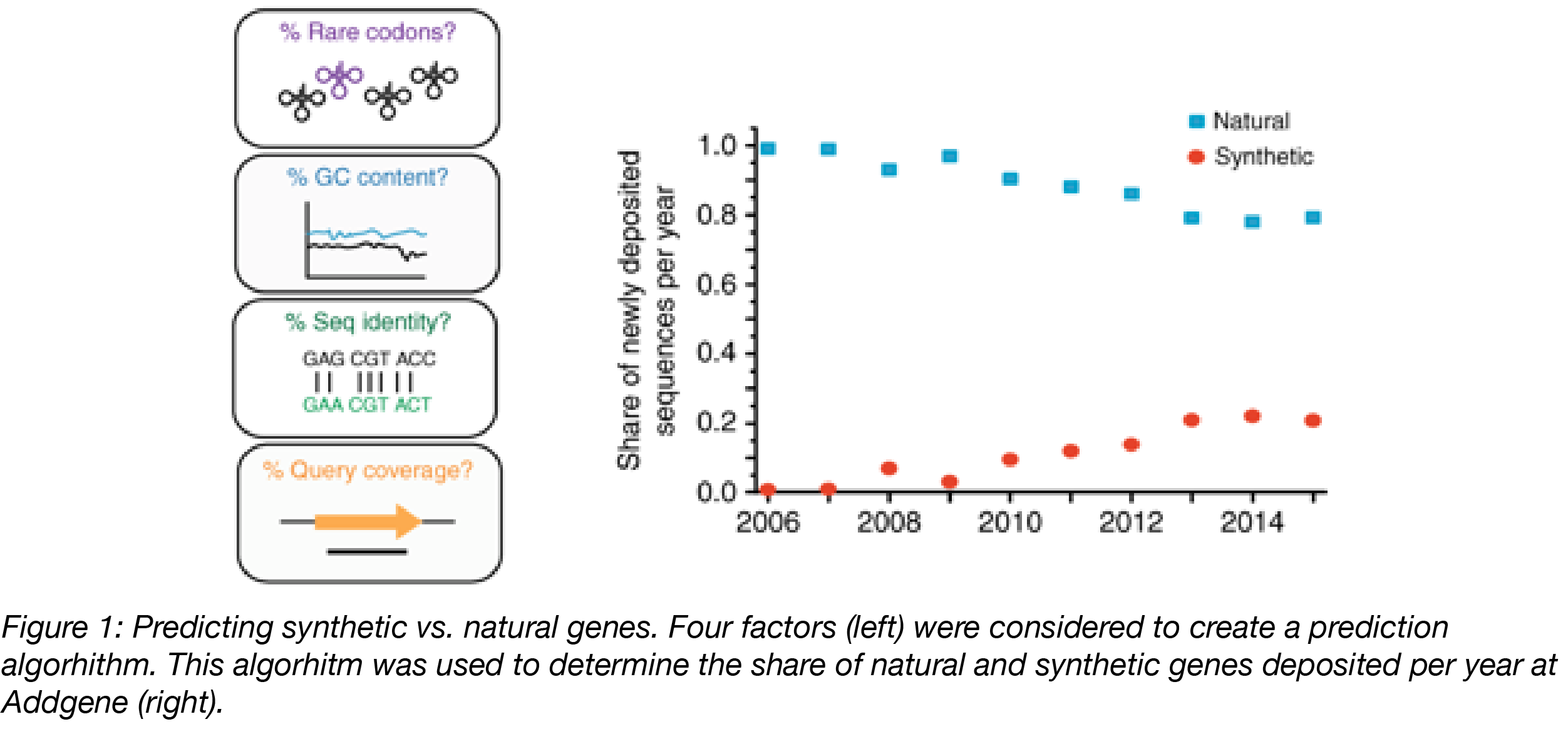 Natural vs synthetic gene