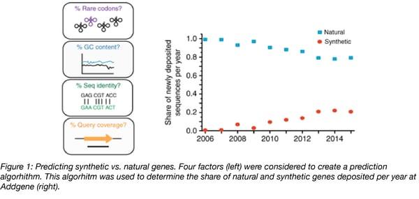 predicting Natural versus synthetic gene