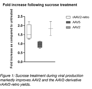 Why Add Sucrose? Improved Yields for Adeno-associated Virus