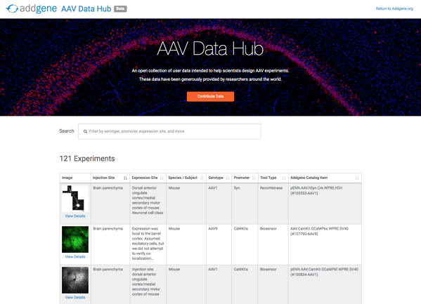 AAV data hub homepage