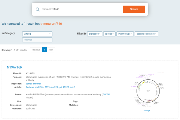 Search a PI on Addgene's site with gene