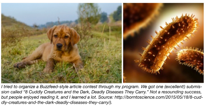 Puppies and bacterial diseases they carry