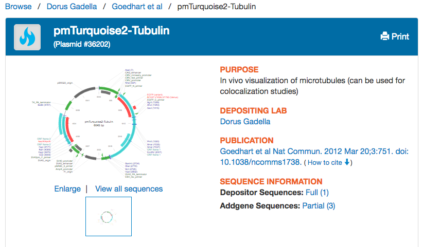 Top_plasmid_page_section_screenshot.png