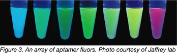 an array of aptamer fluors glowing from green, blue, to purple