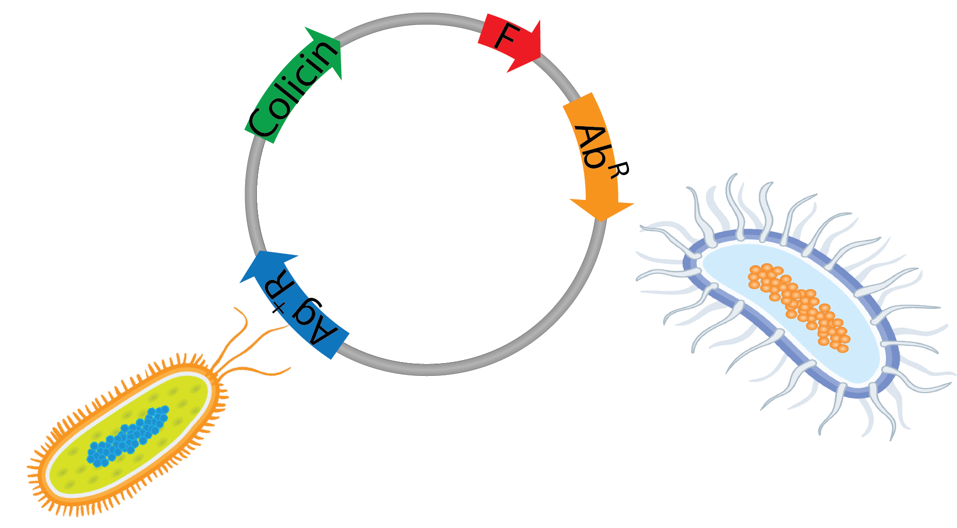 Microbial warfare.png