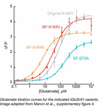 glutamate titration  for iGluSnFr variants