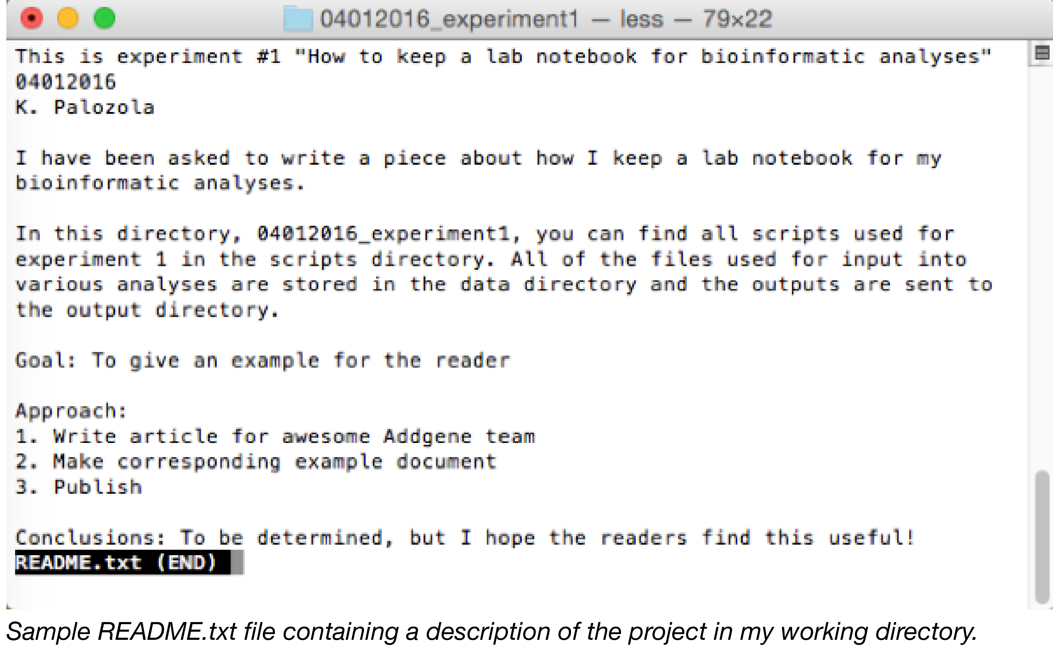 Sample read me text file