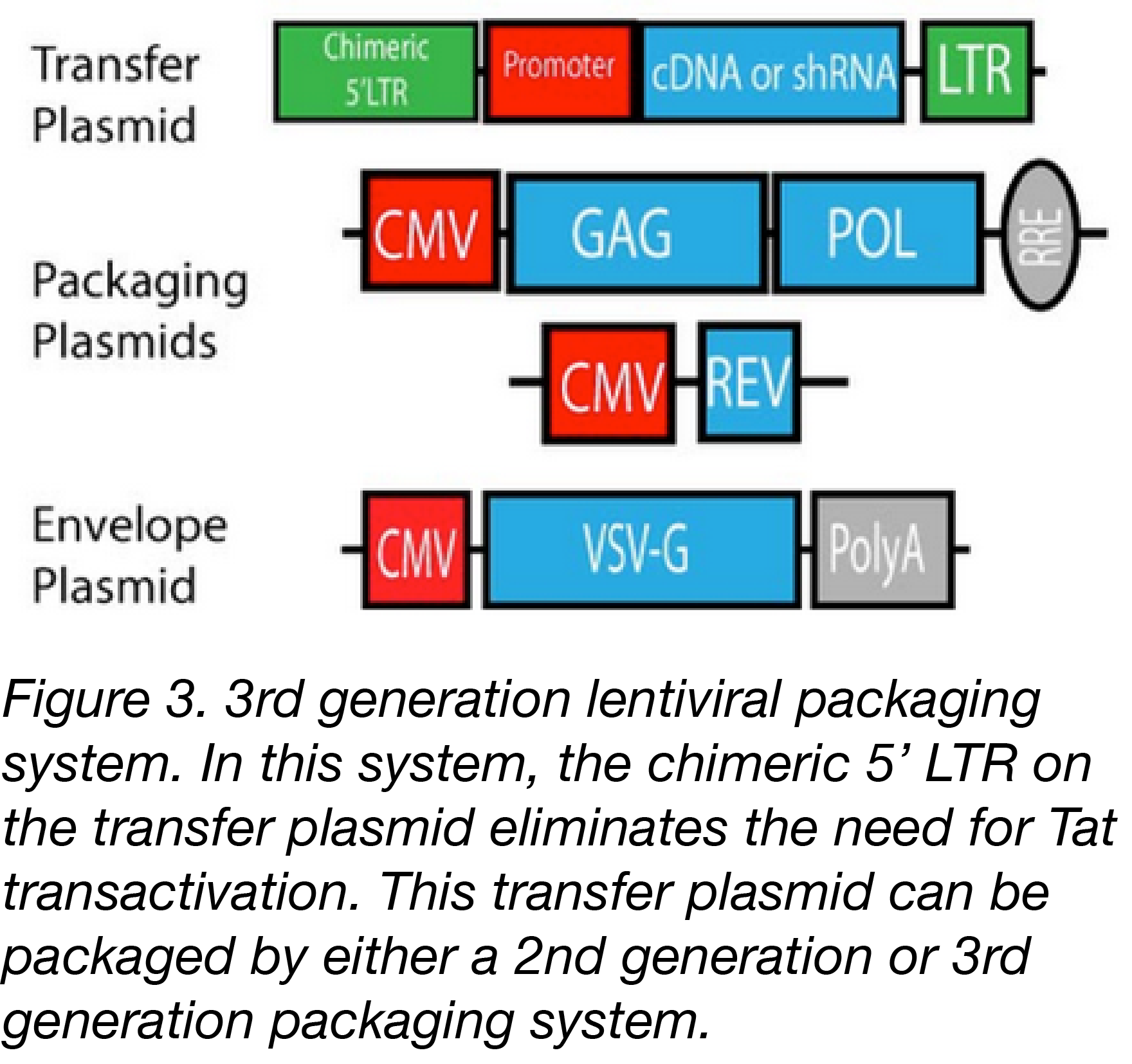 Components of third generation lentiviral vectors