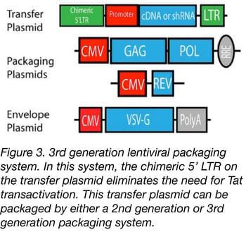 third generation lentiviral packaging system