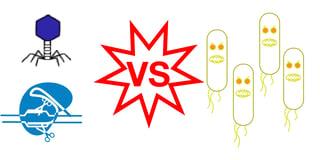 Using CRISPR as an antimicrobial