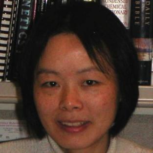 Wenning Qin
