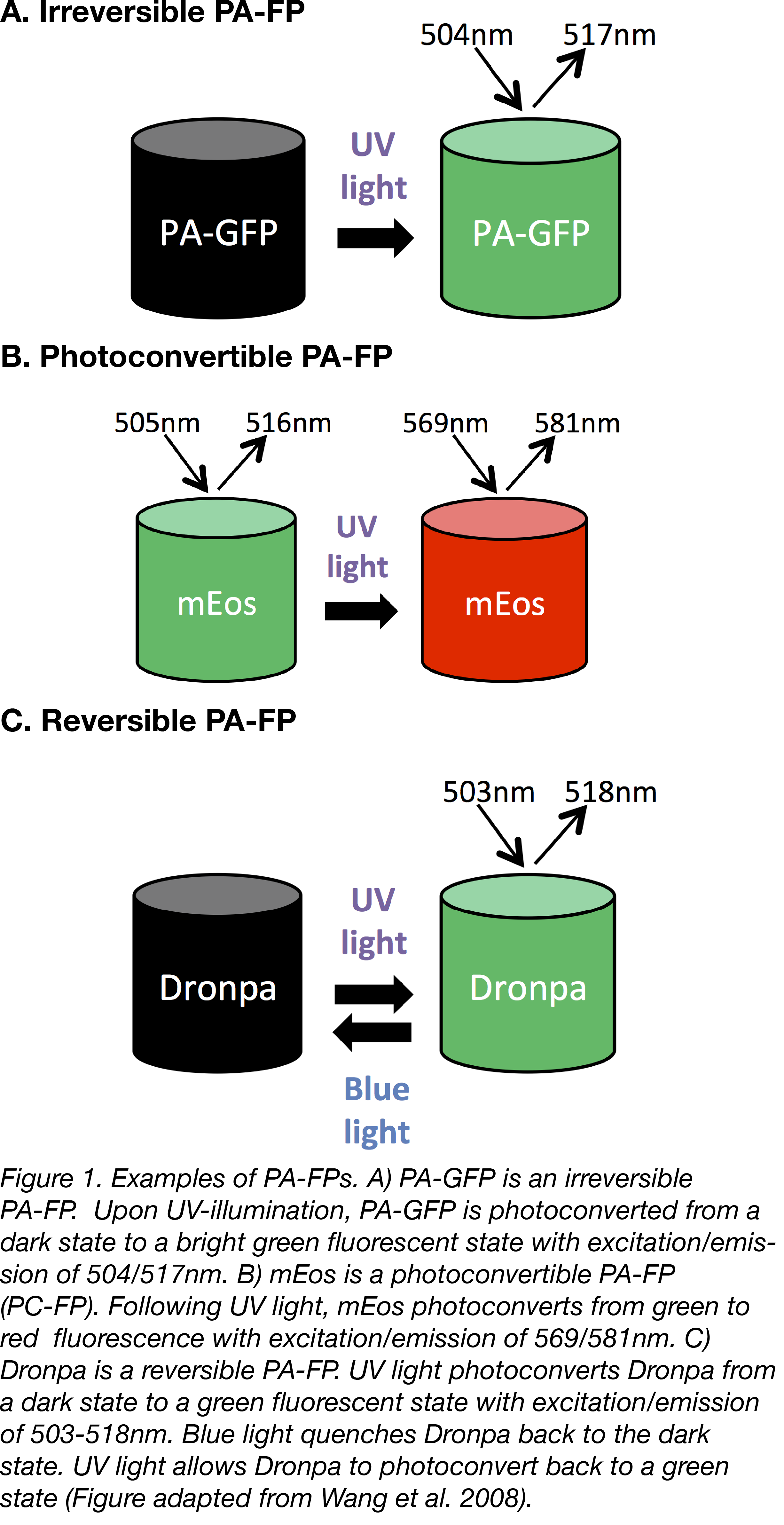 PA-FP Figure 1-03.png