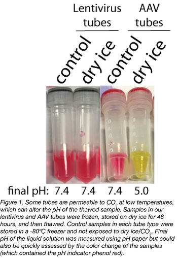 dry ice effect on pH in viral vector samples