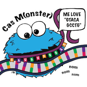 "Comic illustrating Cas protein binding a gRNA and target DNA. The Cas protein is labelled CasM(onster) and looks like cookie monster. It has a quote bubble that says ""Me love GTACAGCCTG."""
