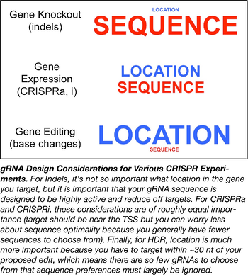gene expression, gene knockout, and gene editing have different design considerations
