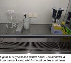 Clean tissue culture hood