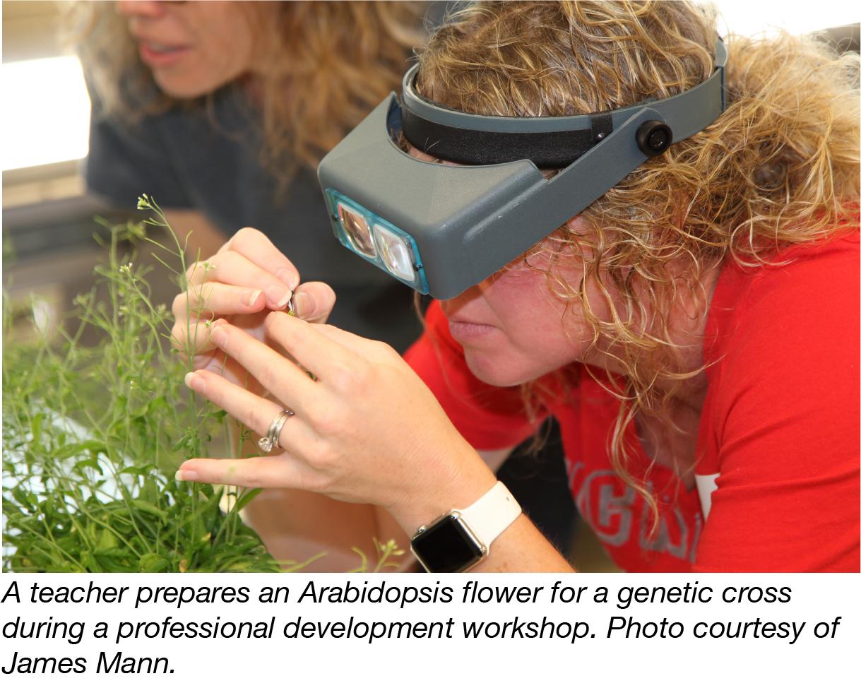 Teacher Examining Plants-01