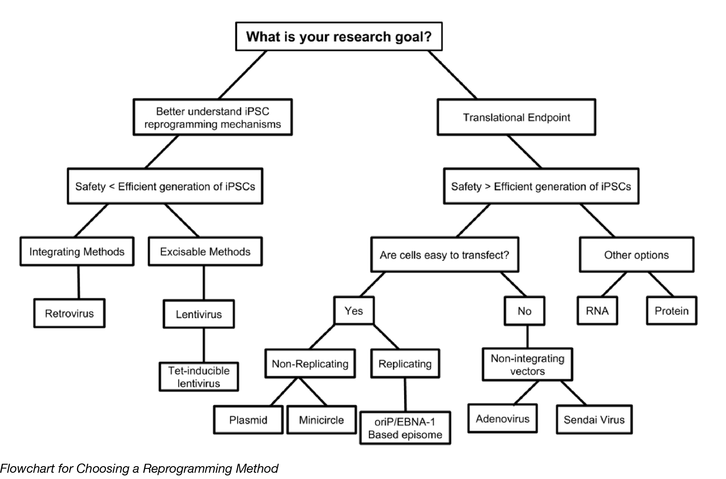 IPSC Decision Tree