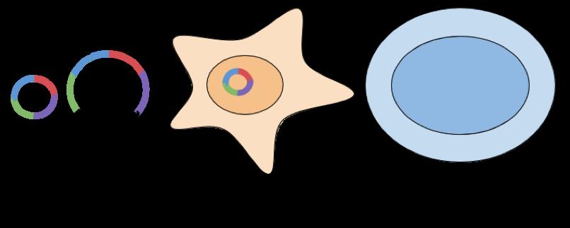 Plasmid IPSC Generation