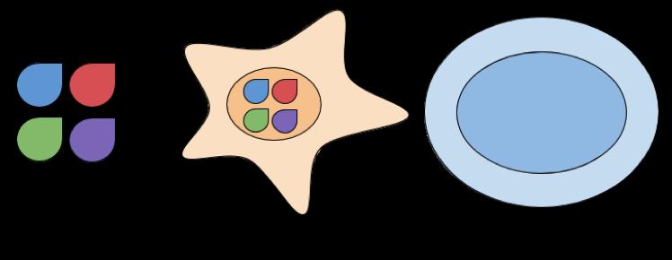 Protein IPSC Generation
