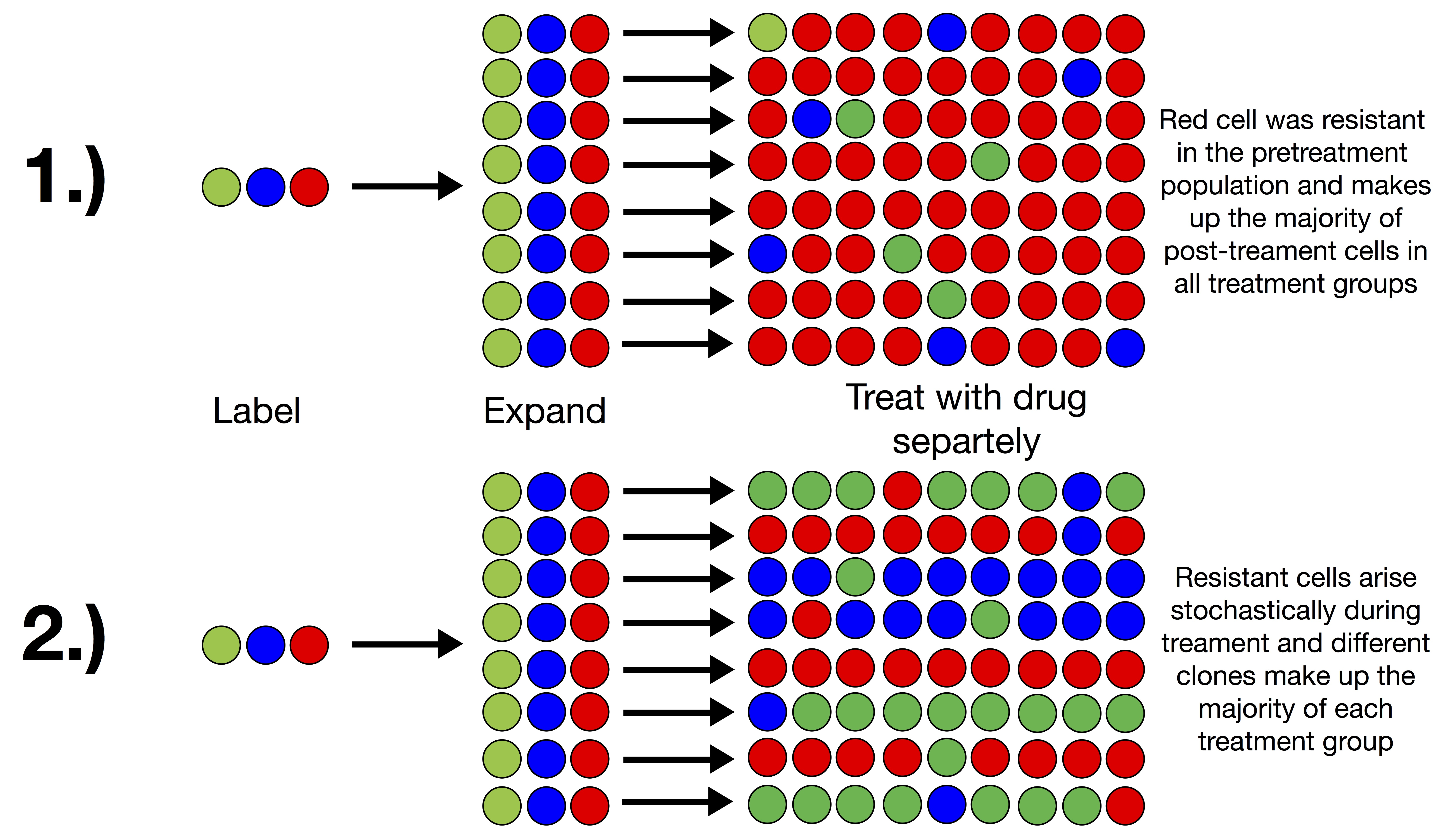 Cancer drug resistance screening outcomes