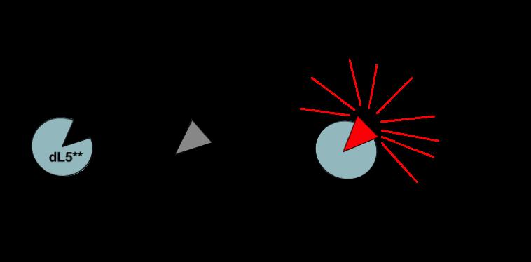 Photosensitizer Figure 1.png