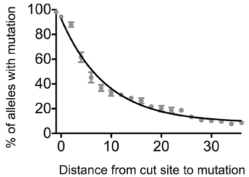 %Z of alleles with mutations is higher with little distance from cut site to mutation.