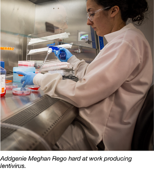 Meghan Producing Lentivirus