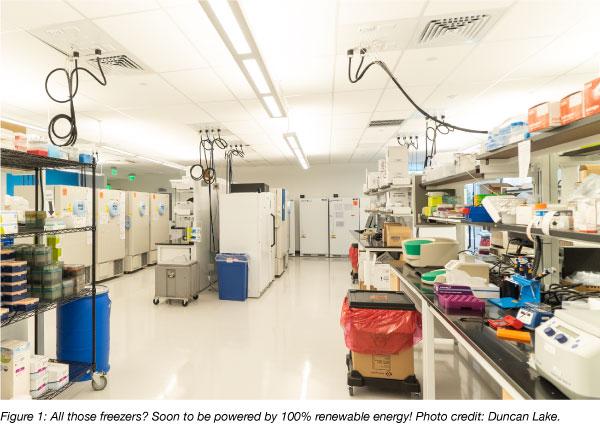 Addgene lab freezers