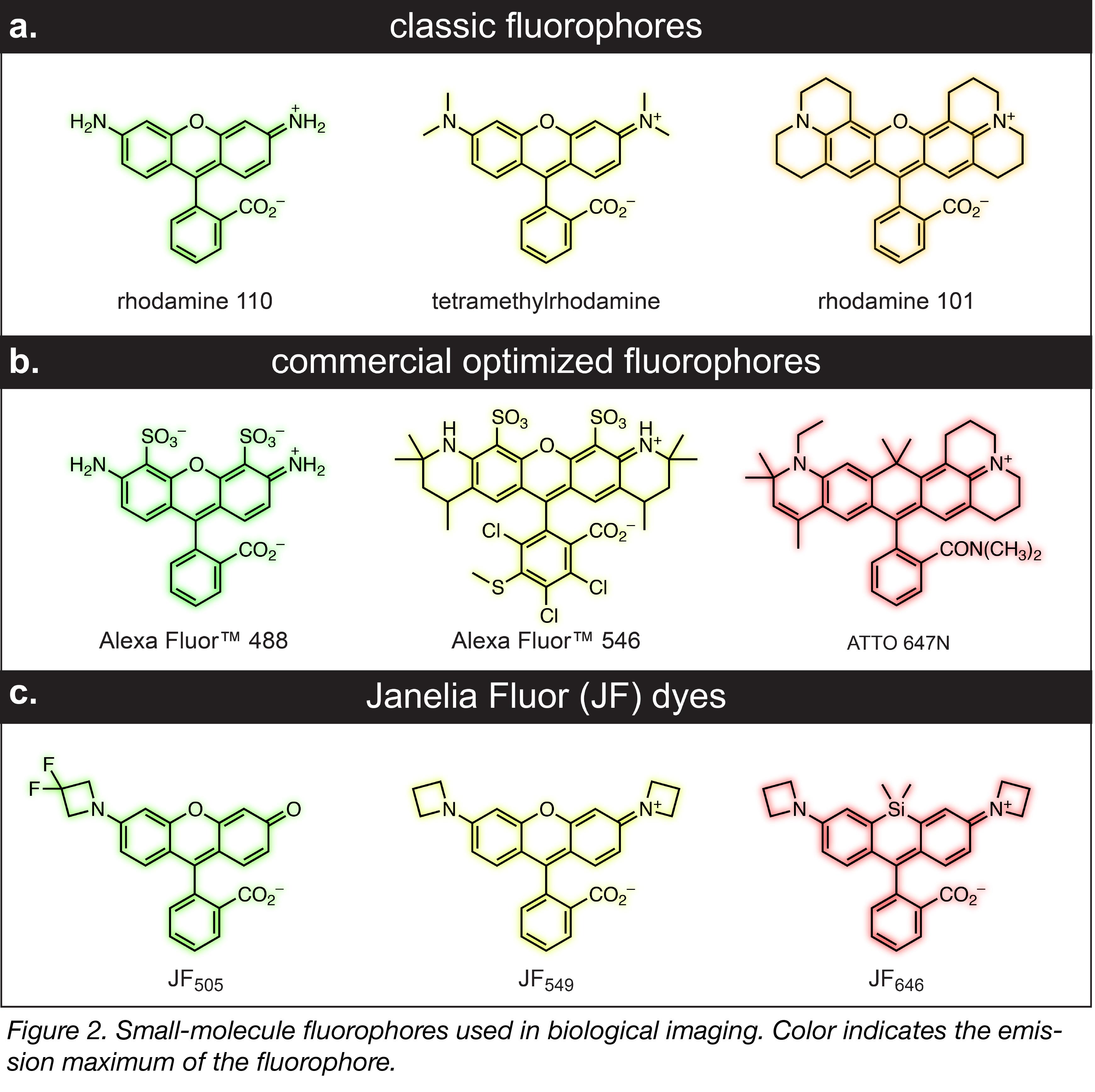 Small Molecule Fluorophores