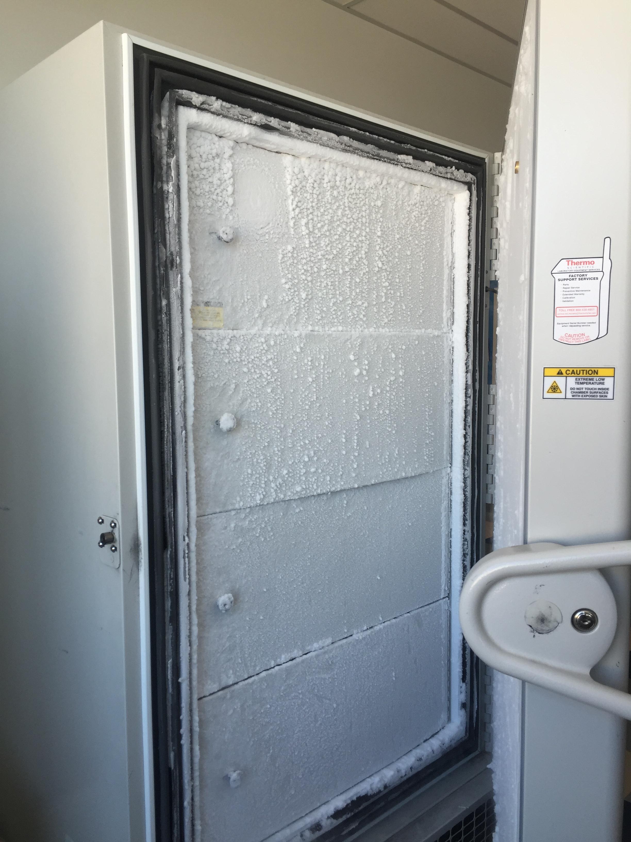 Addgene Freezer