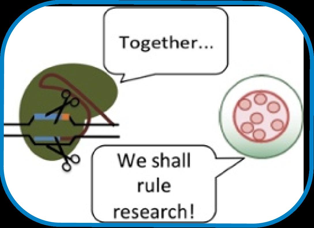 CRISPR_AAV-080580-edited.png