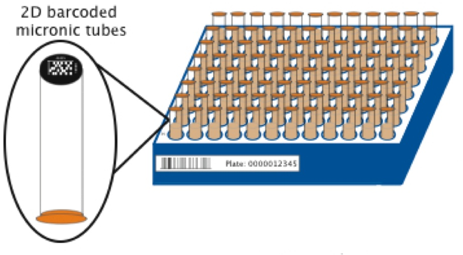 2D Barcodes used at the Addgene repository