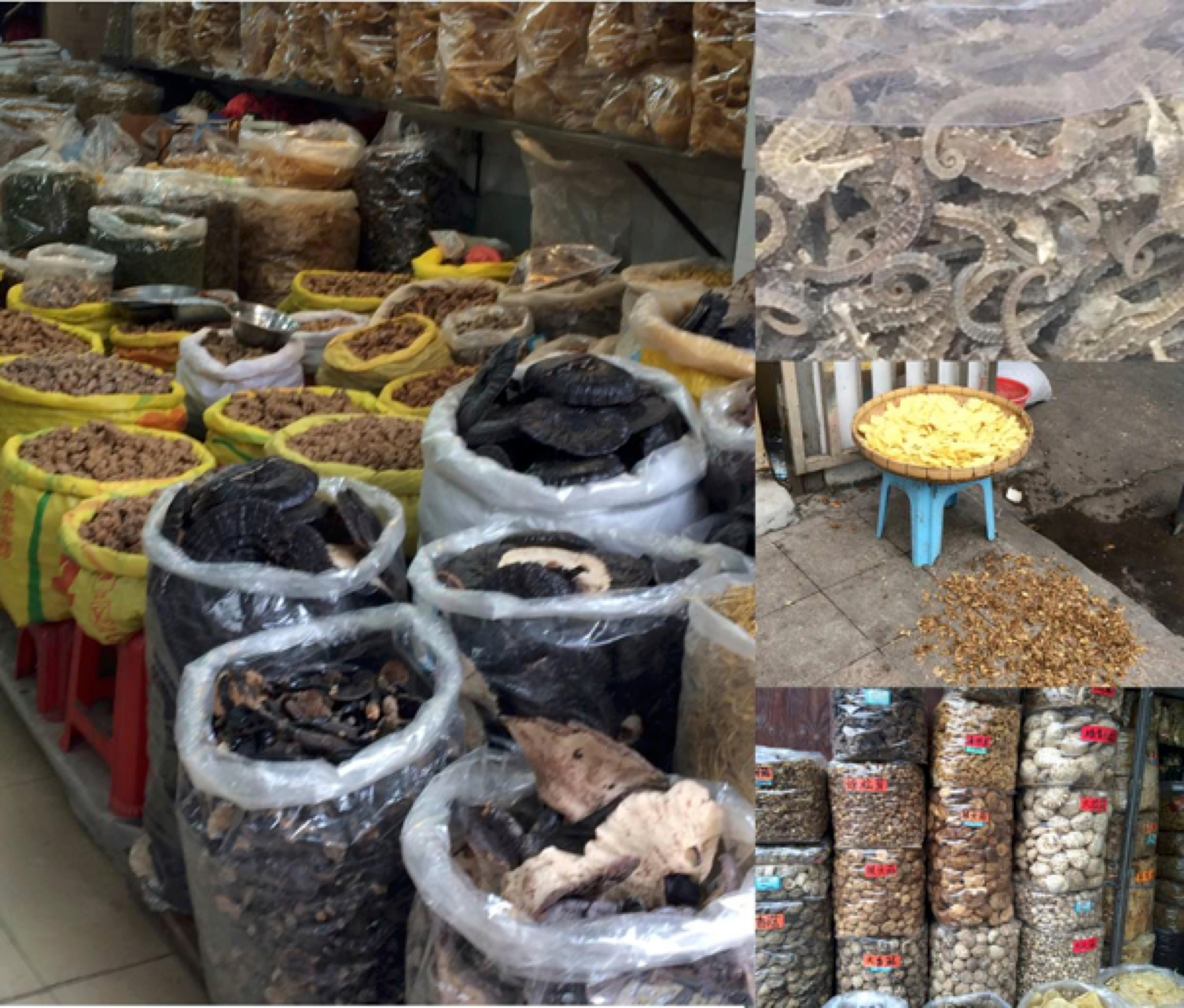 Outdoor Market in Guangzhou, China