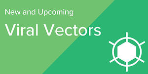 New Viral Vectors Addgene