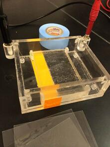 electrophoresis gel box