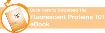 Click to Download the Fluorescent Proteins 101 eBook