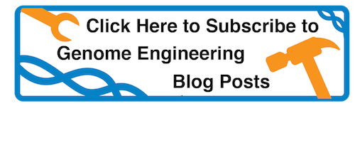 Click to subscribe to Addgene's genome engineering blog posts
